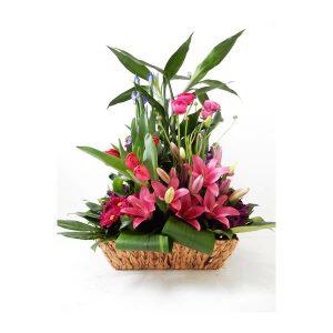 arreglo flotal de tulipanes en canasta